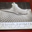 Toshio Shibata