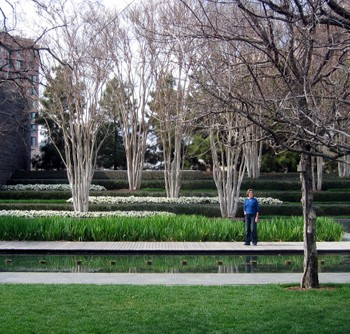 Nasher_garden